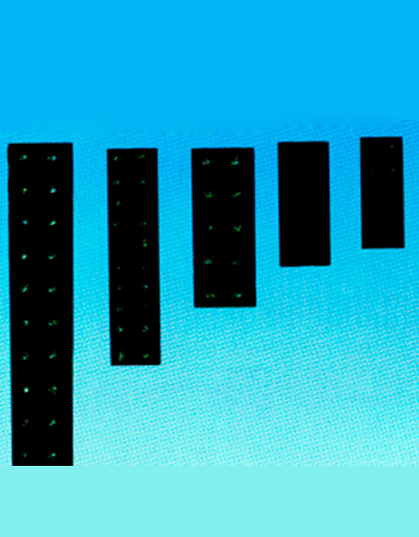 JX5系列胶木接线座